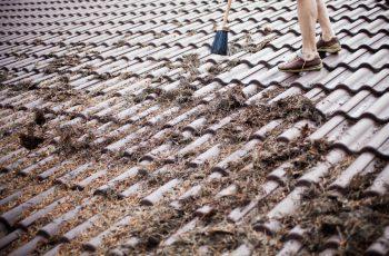 Berühmt Dachreinigung » Preise, Kostenfaktoren, Sparmöglichkeiten und mehr YW92