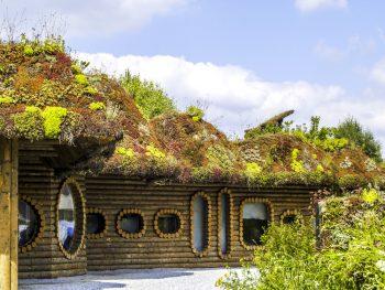 Beliebt Dachbegrünung » Eine Übersicht über Kosten und Möglichkeiten NG97