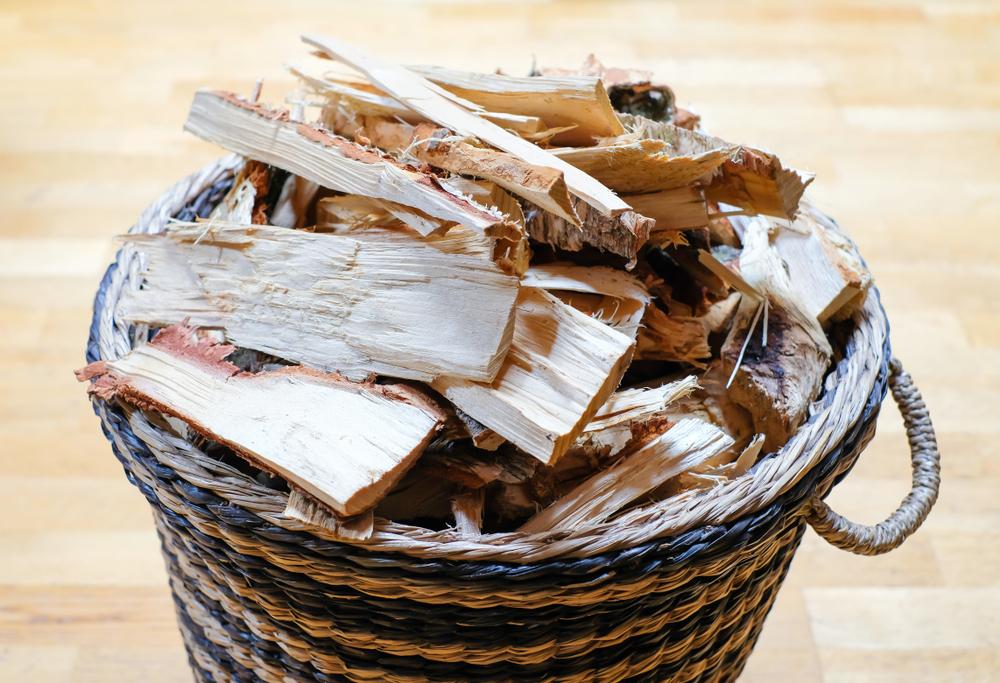 Brennholz: welche Preise man aktuell bezahlen muss