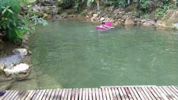 schwimmteich-kosten