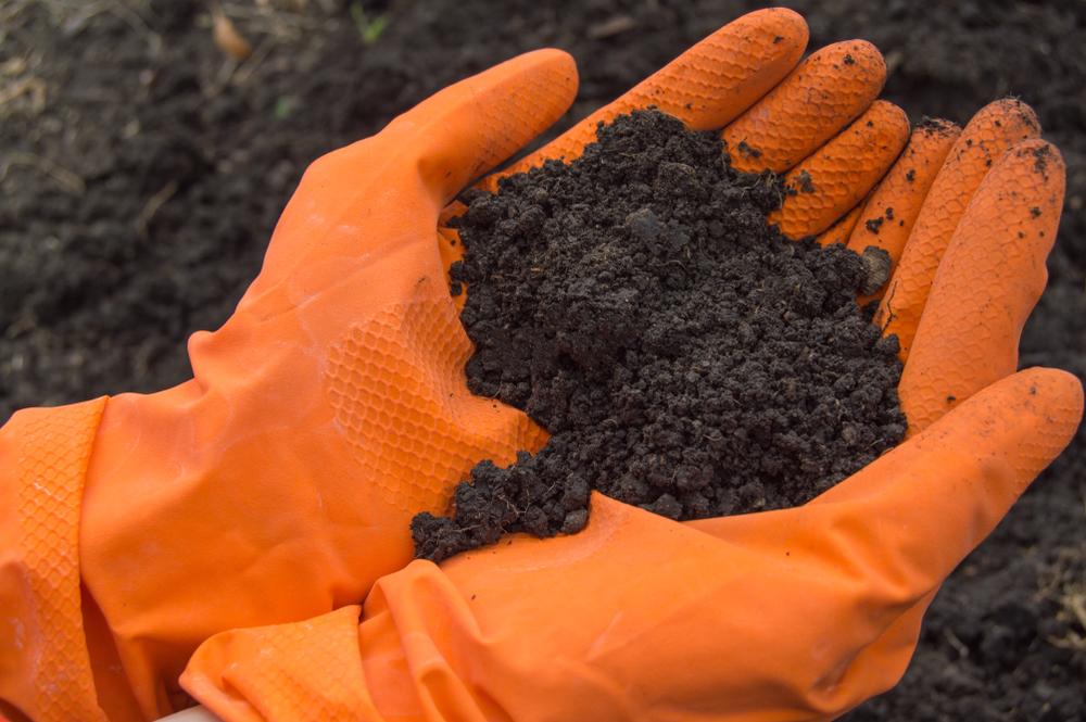 Was kostet ein Bodengutachten und wann sollte es gemacht werden?