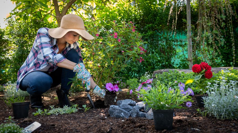 Welche Kosten verursacht das Anlegen eines Gartens?
