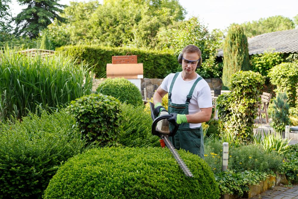 Gärtner: Welche Kosten sind zu erwarten?