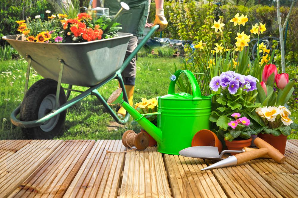 Gartenpflege: Welche Kosten sind zu rechnen?