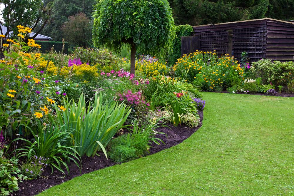 Gartenbau: welche Kosten fallen an?