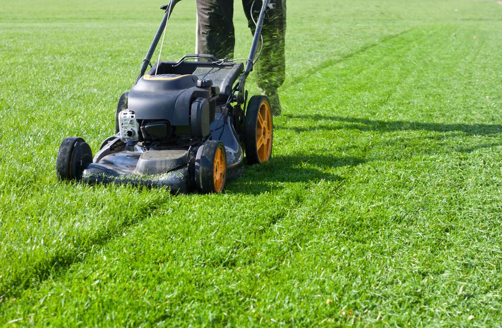 Rasenmähen: Welche Kosten werden verlangt?