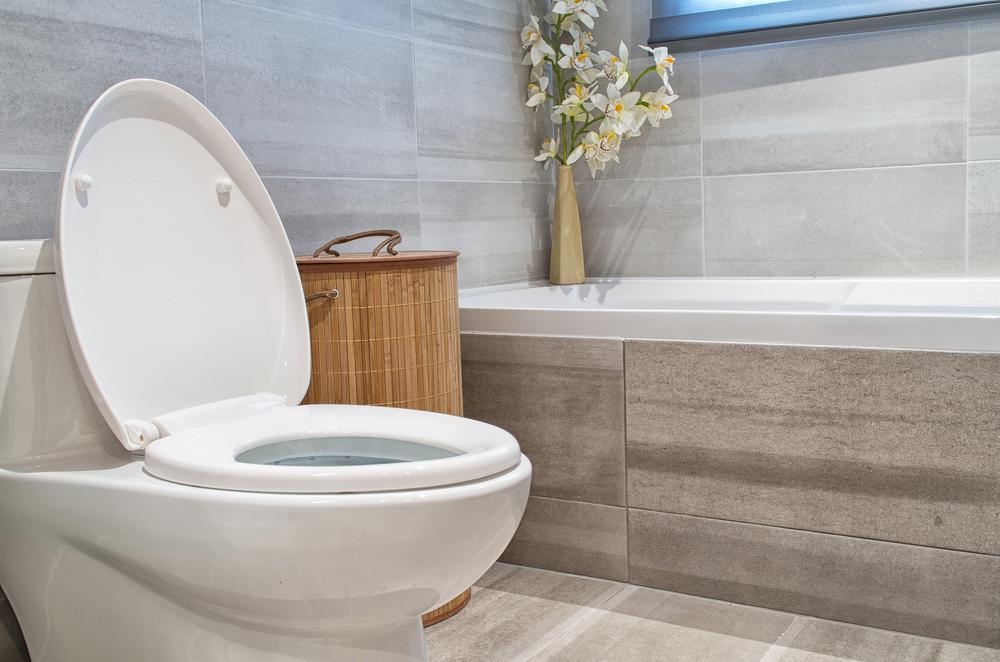 Toilette austauschen: Welche Kosten entstehen?