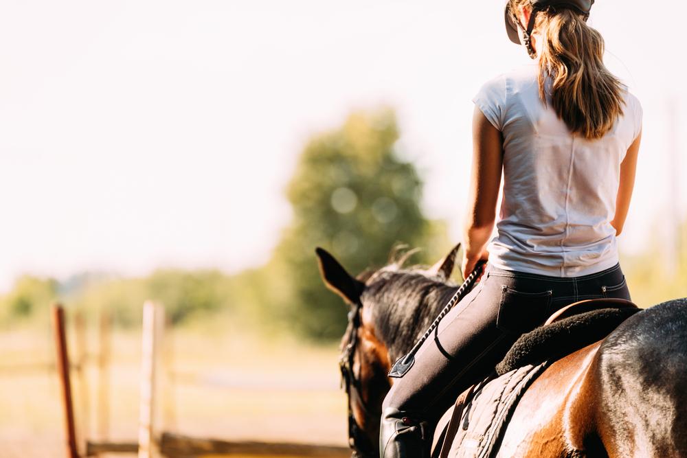 Faszination Pferdesport: Was kosten Reitstunden?