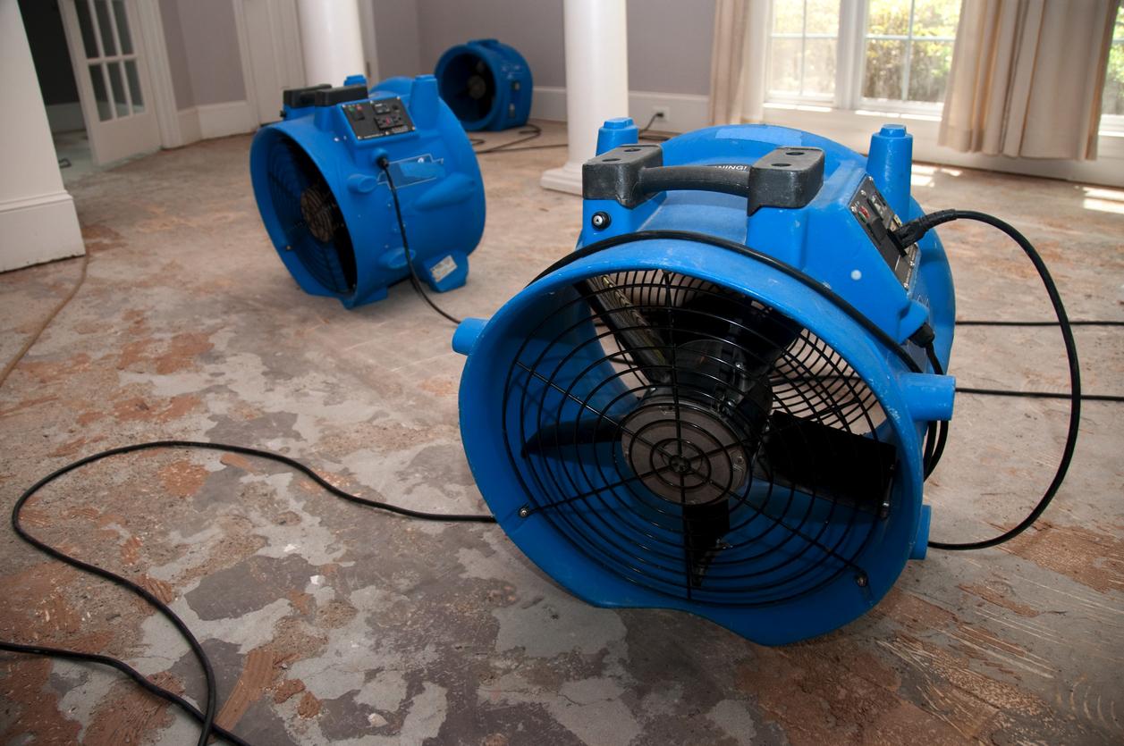 Bautrocknung: Welche Kosten fallen an?
